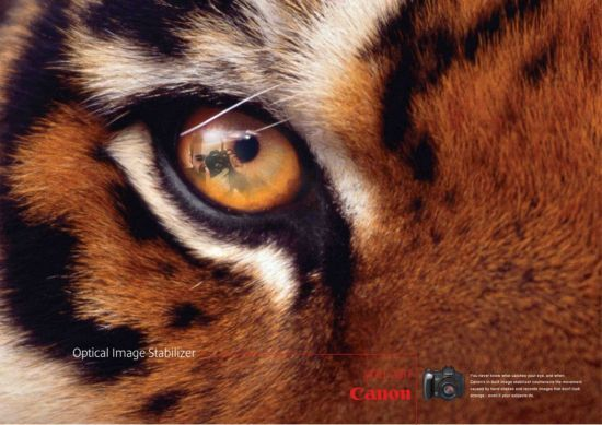 Canon Camera Ad - Note the Eye
