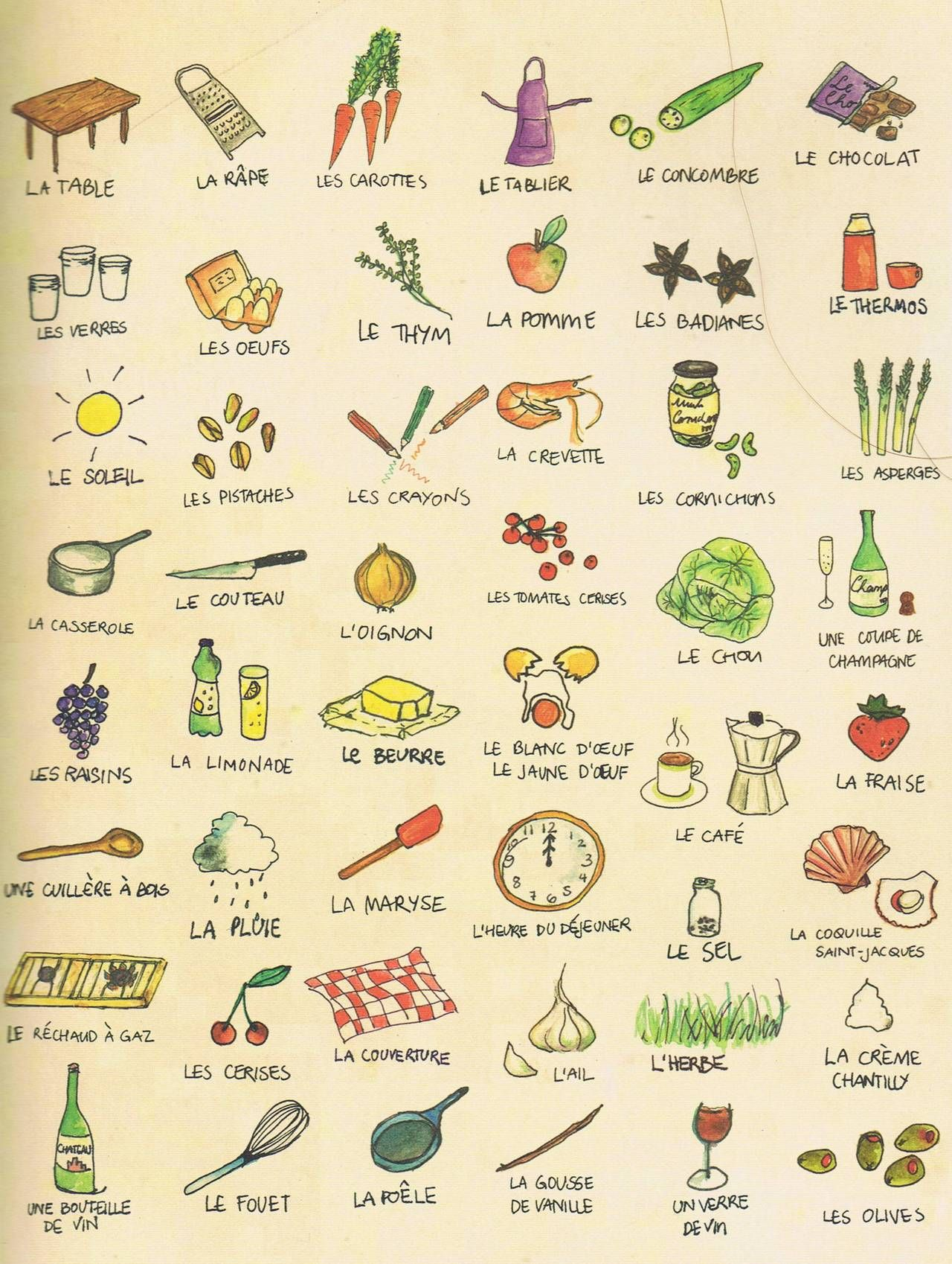 Kitchen Things In French Drawing Watercolor Learn French