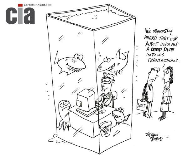 Audit Cartoon  Deep Dive  Audit Cartoons