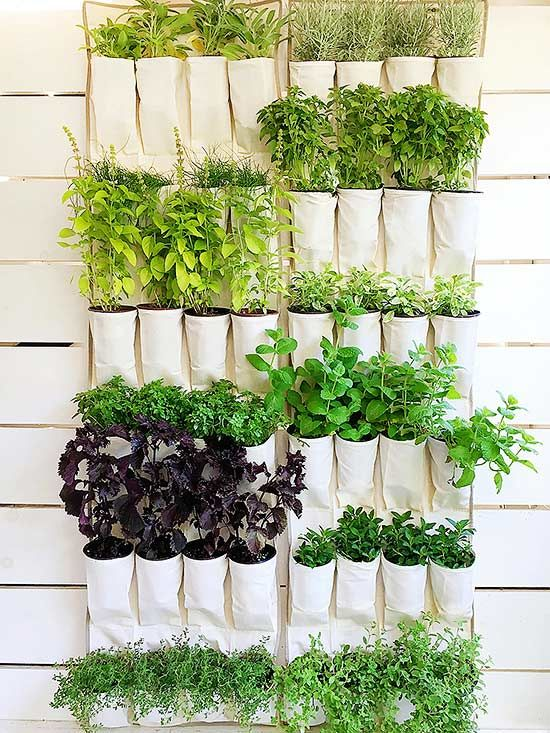 9 Diy Vertical Gardens For Better Herbs Backyard Vertical Garden