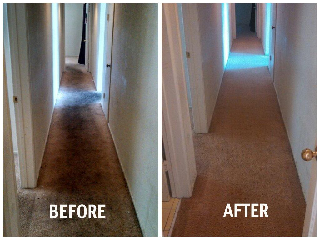 Before And After Carpet Cleaning Thanks To San Diego Stanley