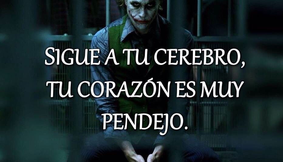 Tu Cerebro Joker Quotes Good Wife Quotes Wife Quotes