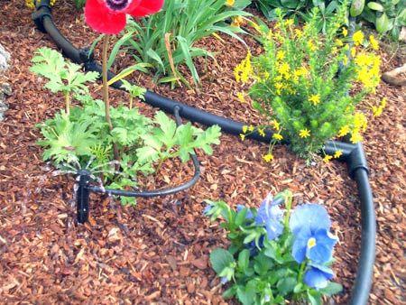 drip system for garden. Drip Irrigation System For Garden R