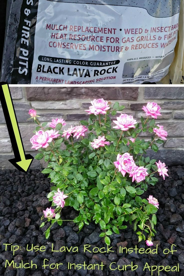 Flower bed & Landscape Part 2: The Reveal -