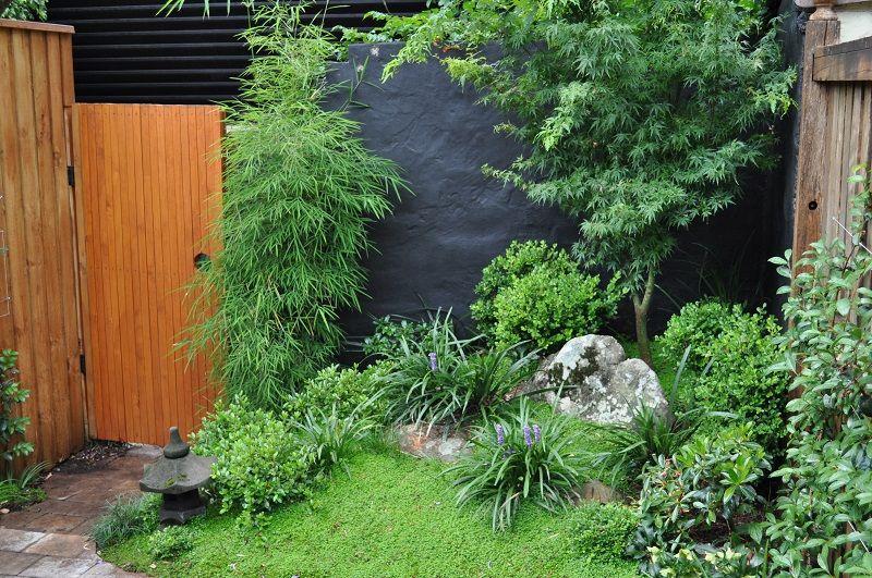 japanese courtyard garden inner west sydney annandale