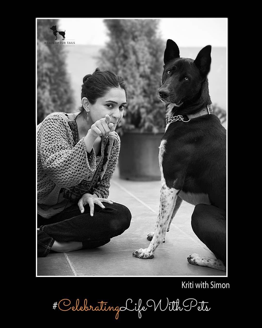 Celebratinglifewithpets Headsupfortails Buy Pets Online Pet Supplies Pet Parent