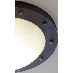 Photo of Robers Leuchten outdoor ceiling lamp Till natural iron with opal …