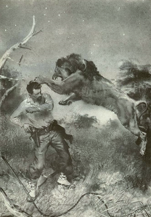z- Lion Attacking Man w Holstered Pistol | Wildlife Hunting Photos