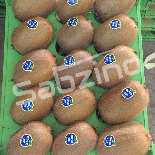 خرید و فروش عمده کیوی صادراتی آستارا برای صادرات به روسیه و هند , قیمت روز کیوی صادراتی آستارا