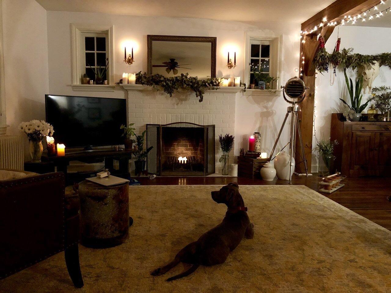 Our Living Room Halloween Evening Lancaster Pennsylvania 1280x960 Https Ift Tt 2jssbfh Cozy House Room Dorm