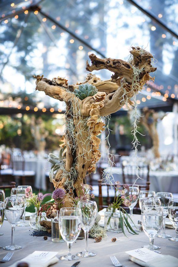 Pin by Vreeke Vreeke on flowers Lake tahoe weddings