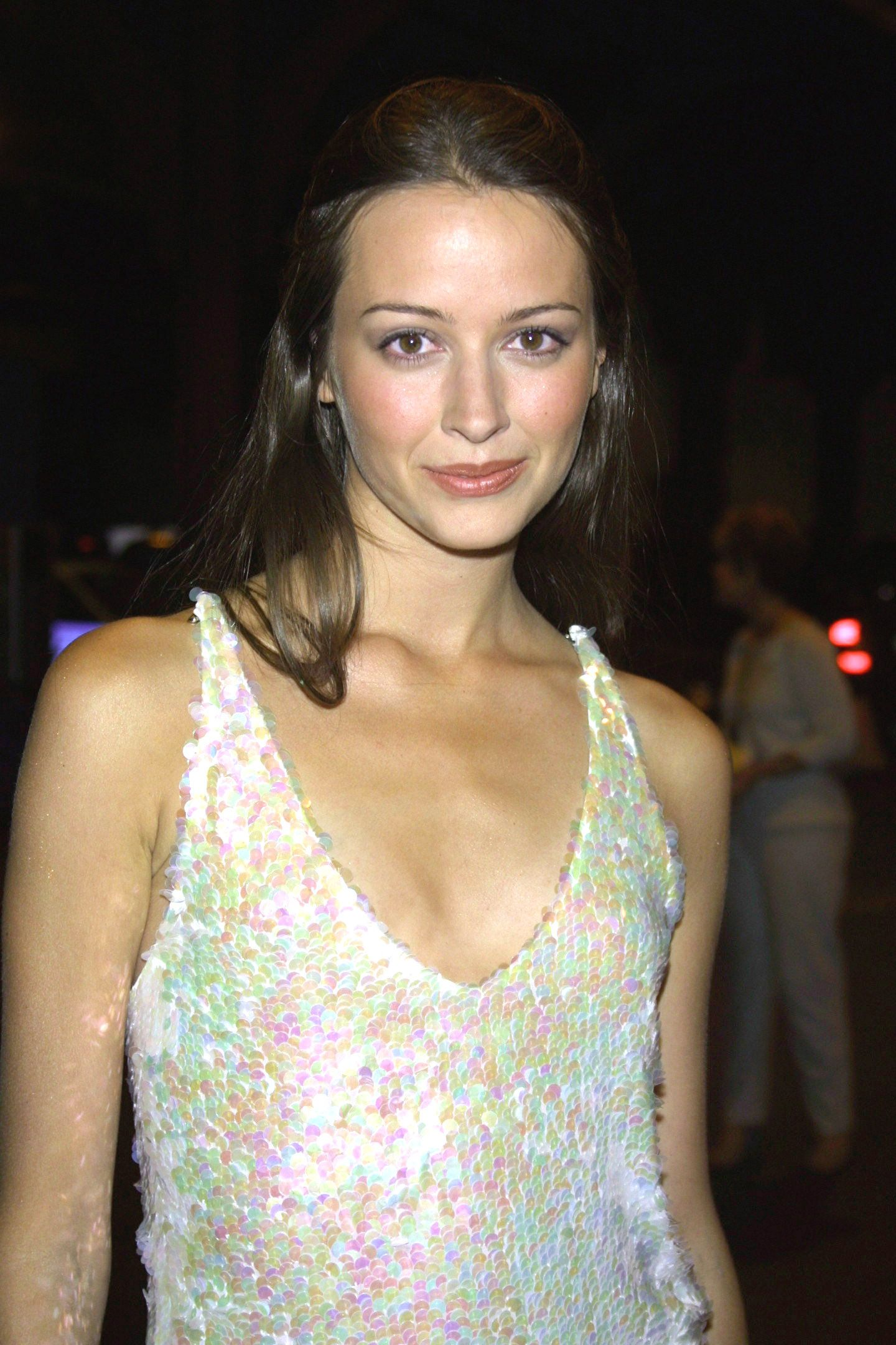 Amy Acker born December 5, 1976 (age 41) nudes (49 photo), Ass, Bikini, Twitter, see through 2017