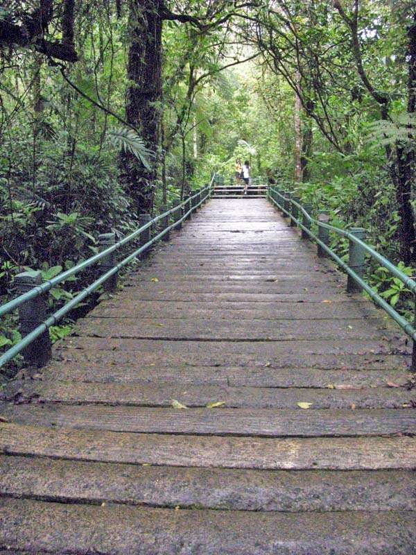Cibodas Bridge Sukabumi West Java Indonesia Pathways