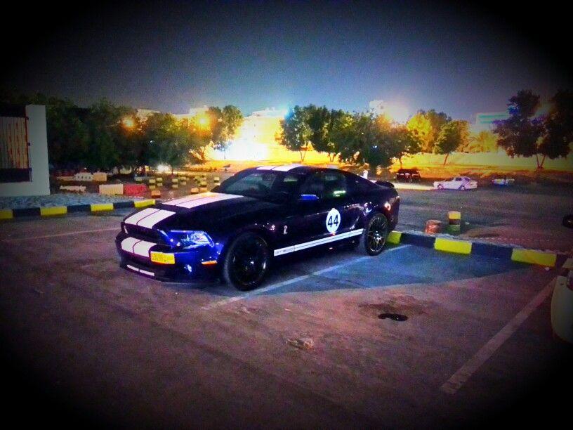 Shelby Mustang GT Mustang shelby, Mustang gt, Mustang
