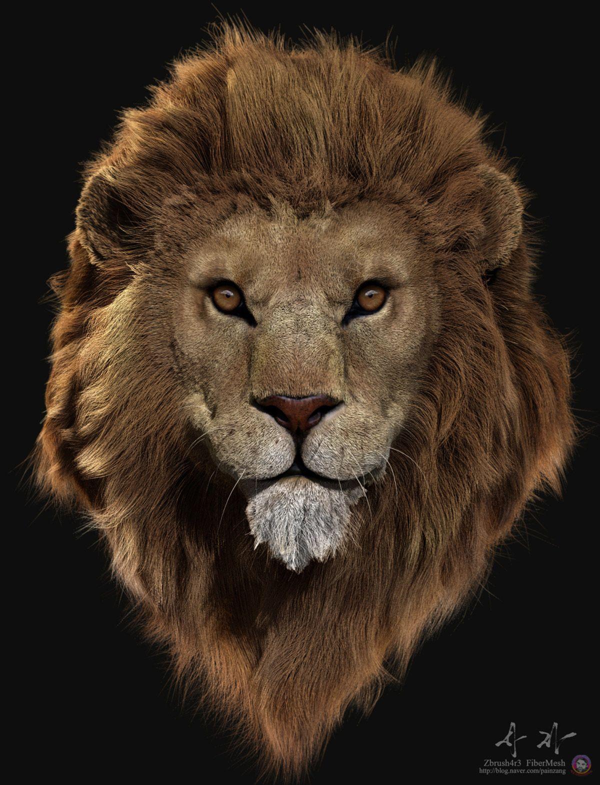 Really amazing fiber mesh tutorial Lion, Zbrush, Animals