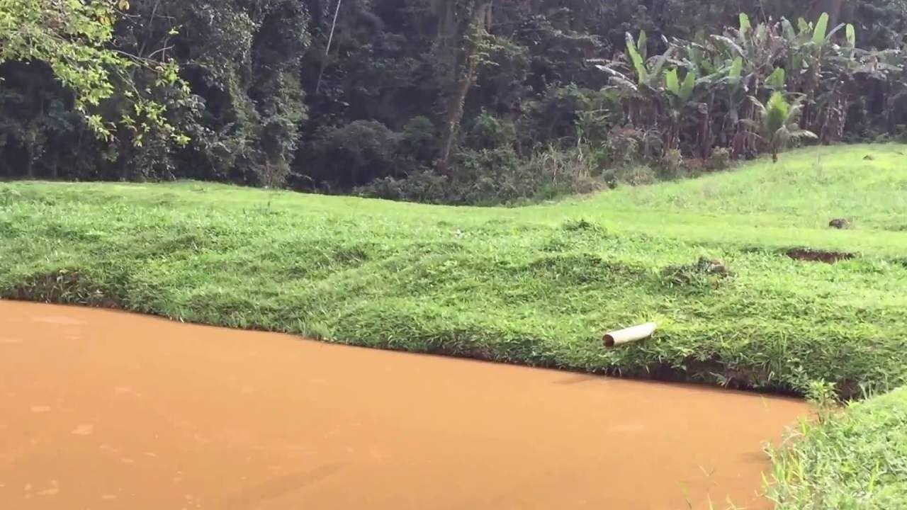 Famiglia Libardoni: Encontro Xerém, RJ, Brasil. Açude, Paulo. IMG_8623. ...