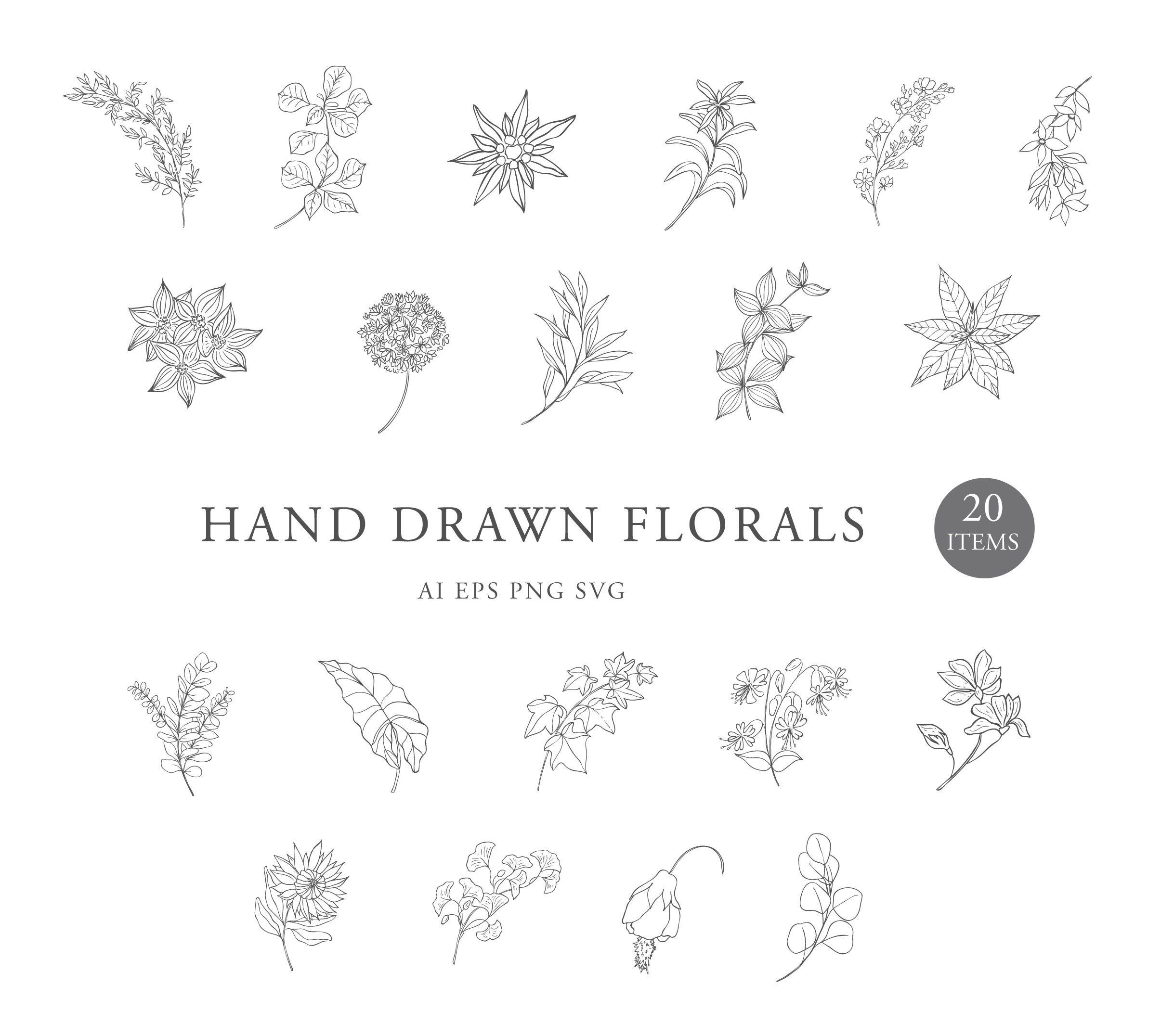 Botanical Clipart Hand Drawn Floral Leaves Leaf Flowers