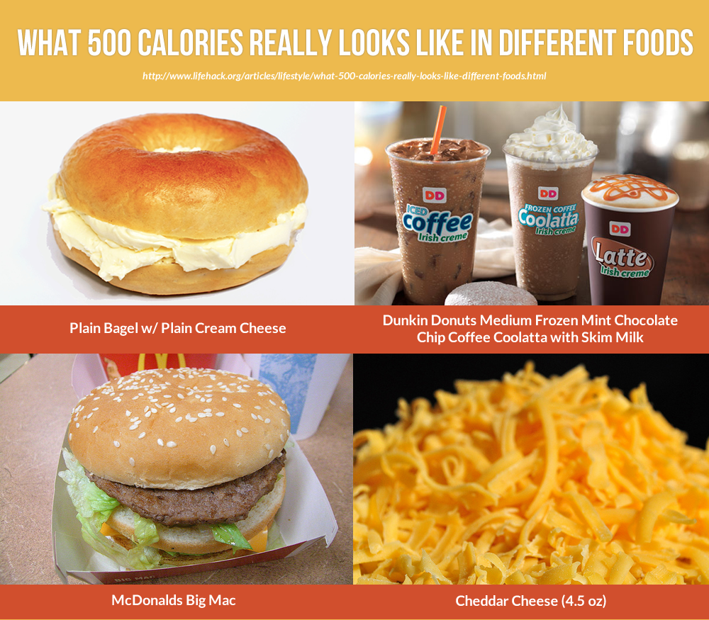This Is How 500 Calories Looks Like In Different Forms Food Infographic Food Different Recipes