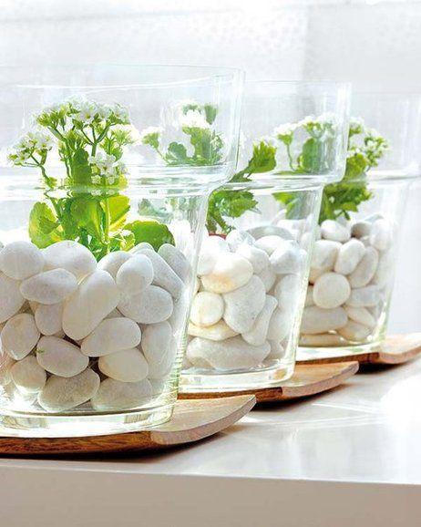 decorar con flores macetas de cristal con piedras y plantas
