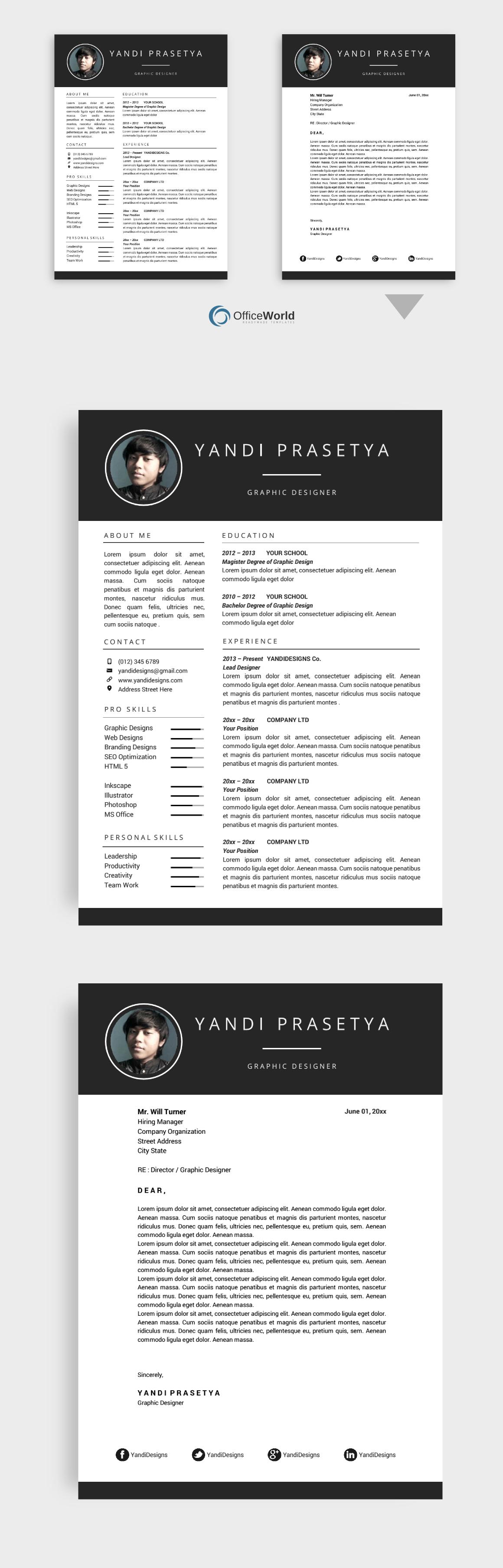 Brilliance Resume SALE Easy fonts, Clean resume, Resume