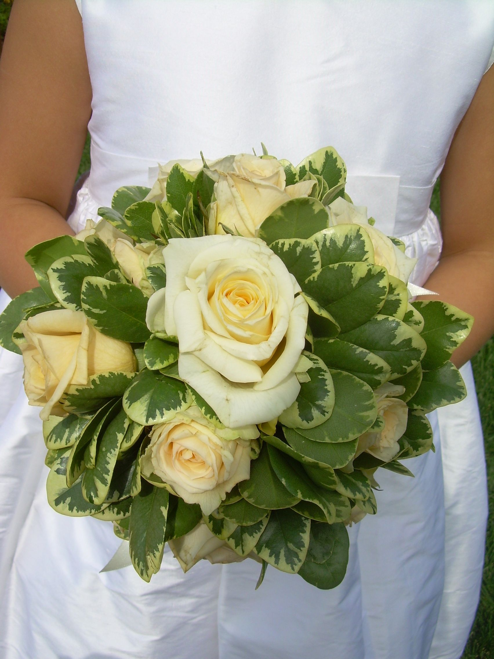 white and green bouquet large open roses with variegated