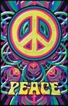 Colorful Decor - Peace Sign Poster
