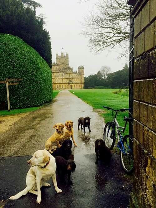 Pin By Lisel Von Trapp On U K English Country Manor English Countryside Around The Worlds