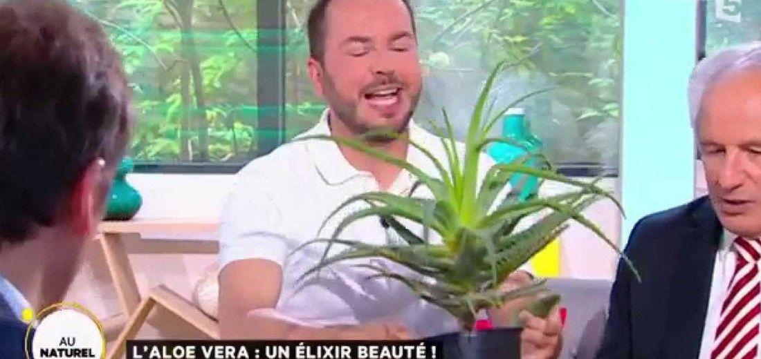 Vidéo Émission La Quotidienne sur France5  Julien nous fait découvrir les bienfaits de l'aloe vera, la plante star pour la cosmétique, les soins et le bien-être.