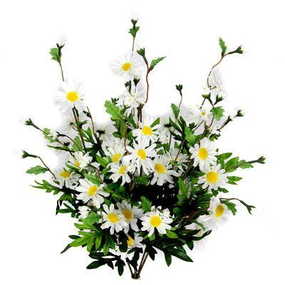 AdmiredbyNature 6 Stems Artificial Full Blooming Daisy Flowers, Flower Buds and Greenery Color: Cream