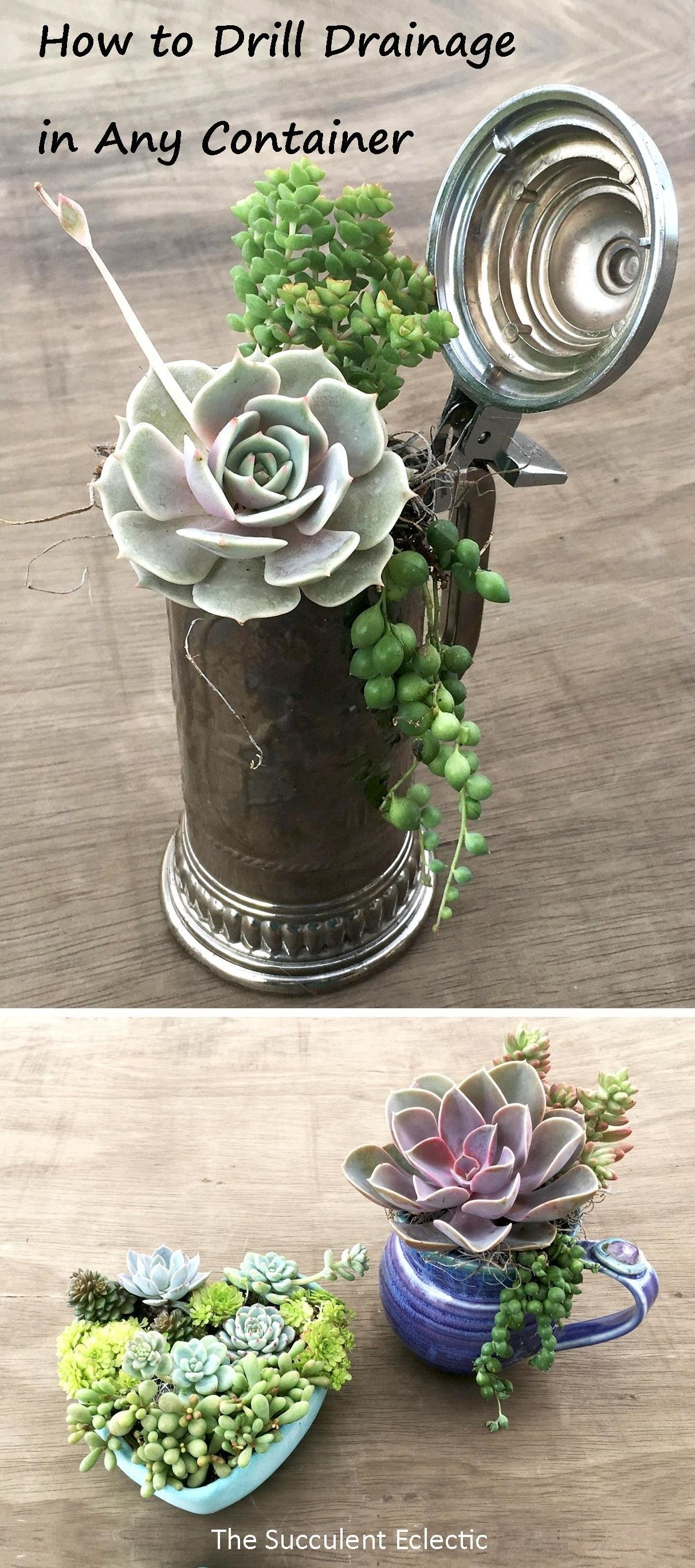 Planting Succulents In Containers Without Drainage Drill Your Own The Succulent Eclectic Succulents In Containers Succulent Planter Diy Planting Succulents