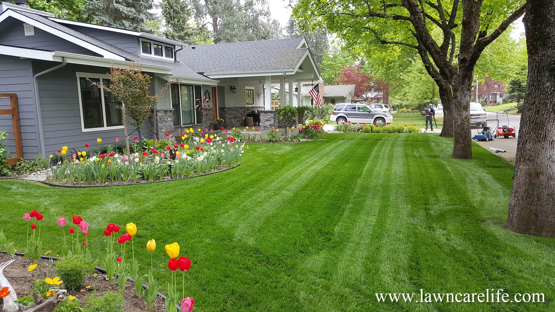 Jason Creel Having A Lot Of Experience In Growing Lawn