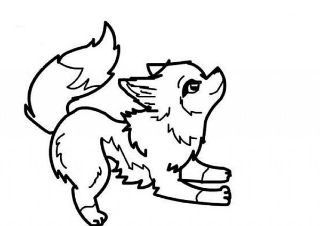 Pin By Isabel Barbosa Games On Sketches Drawings Coloring Cute Wolf Drawings Wolf Drawing Easy Wolf Colors