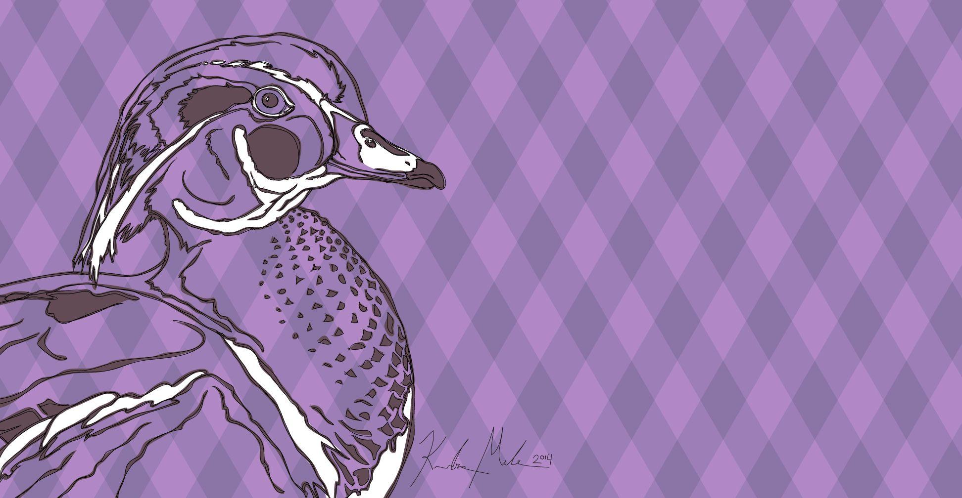 Duck - 2014 [digital drawing]   More Artwork on MederMade.wordpress.com - Portfolio: KendraMeder.wordpress.com