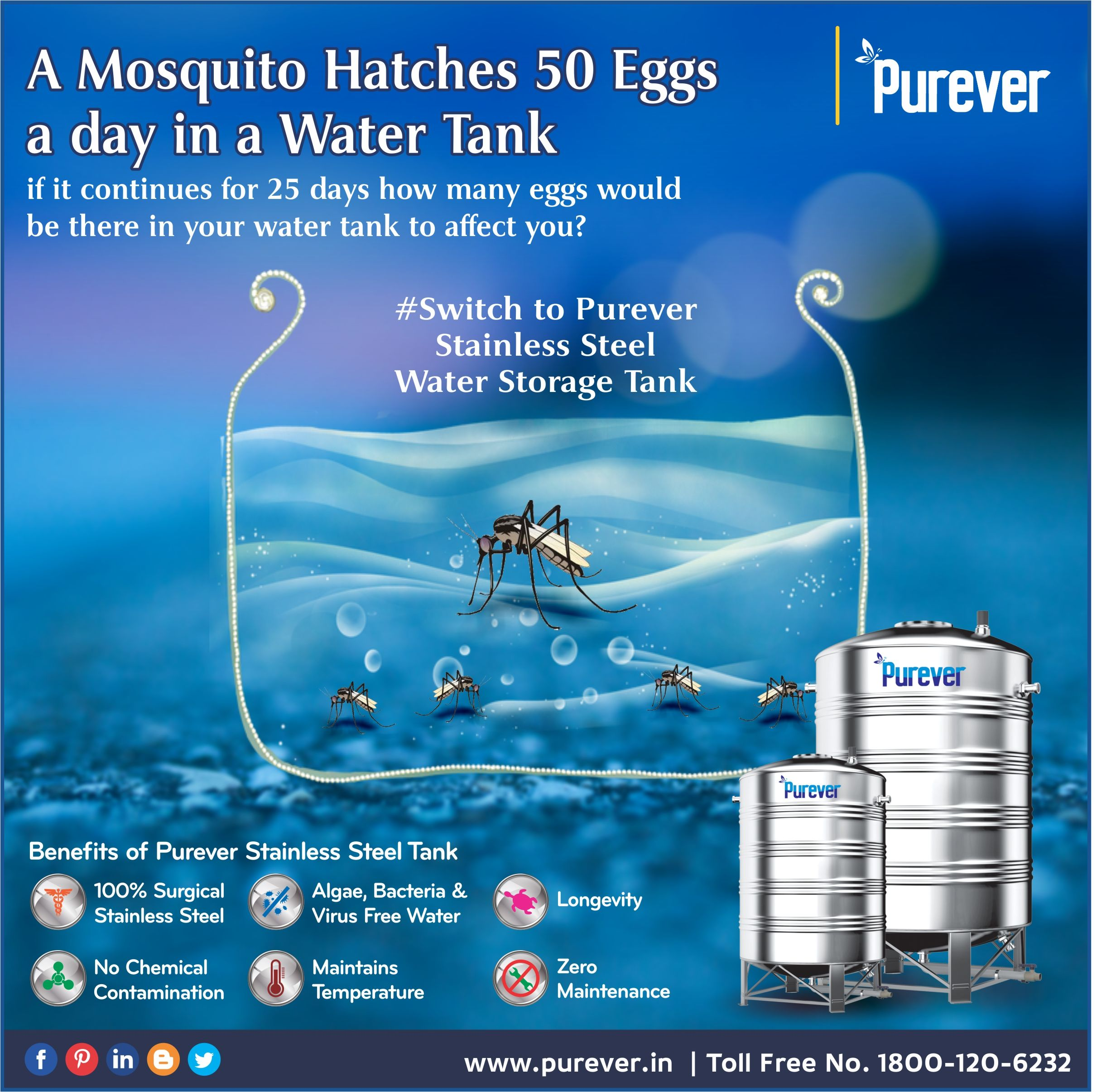 A Mosquito Hatches 50 Eggs A Day In A Water Tank If It Continues For 25 Days How Many Eggs Water Tank To A Water Storage Tanks Water Tank Water Storage