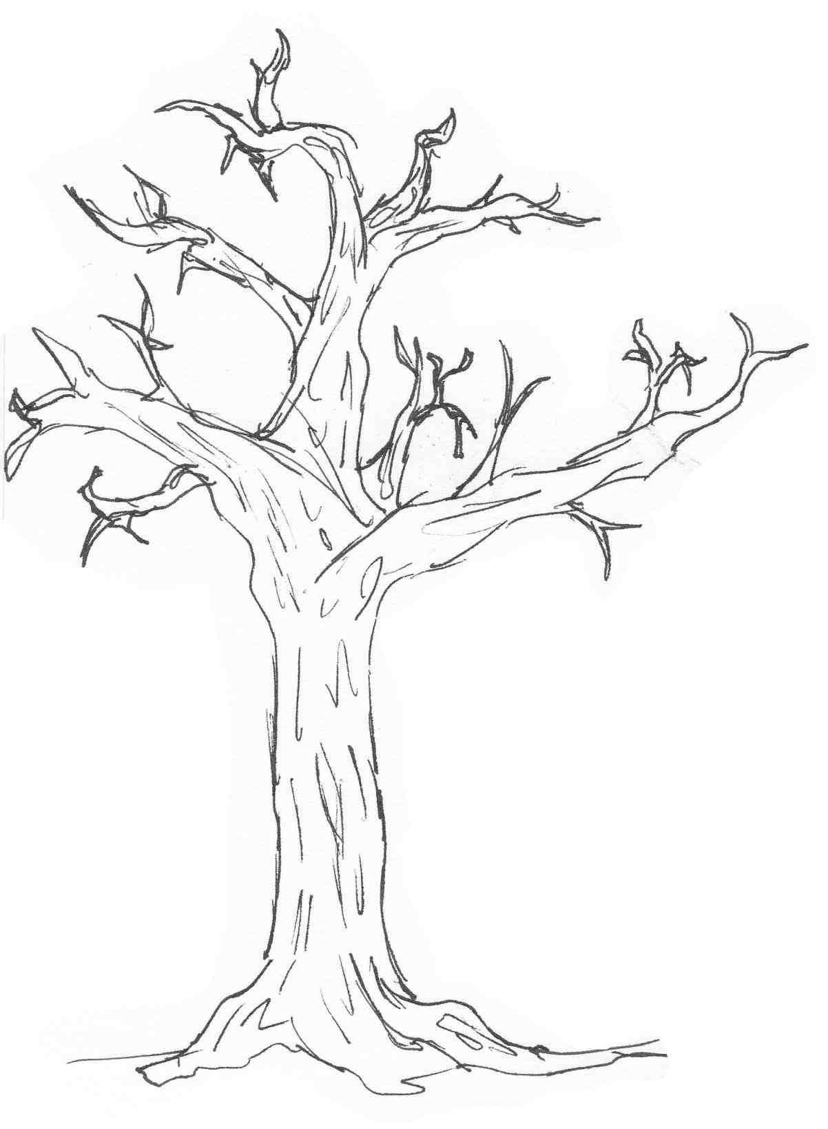 Easy Drawing Of A Tree in 2019 Easy drawings, Drawings