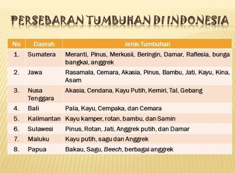 Peta Persebaran Flora Dan Fauna Di Indonesia Beserta Gambarnya Flora Indonesia Gambar