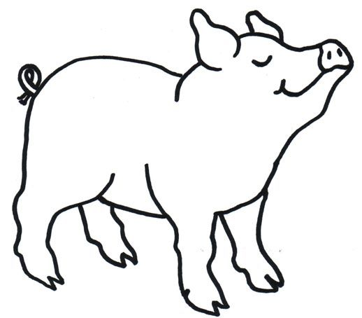 my pig clipart page 4 seuss pinterest free clipart images rh pinterest com pig clip art free images pig clip art images