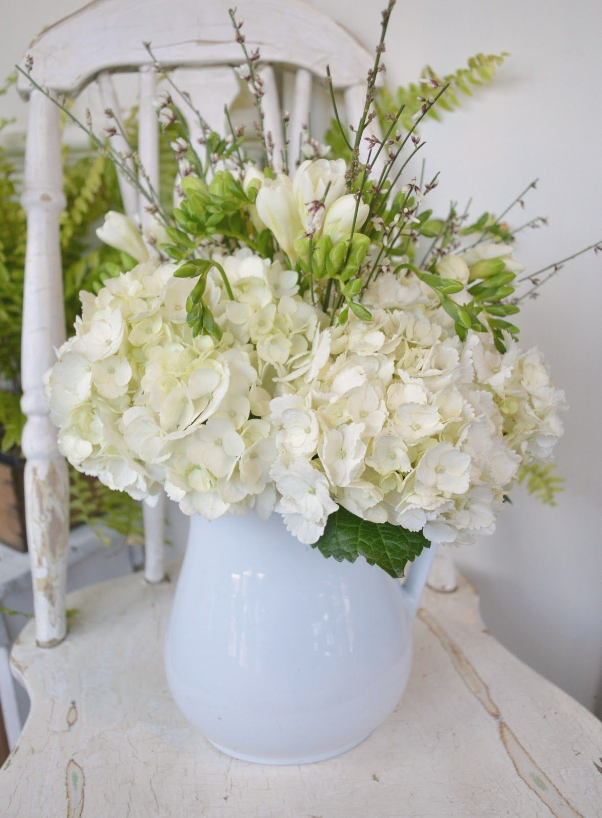 pretty white hydrangeas (With images) Beautiful flower