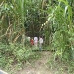 I panicked, for a second I didn't see him.  Then a line of children appeared and there he was.  Into the jungle.  Where is Jesus?  In my heart.  He loves to tell the story.