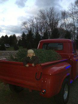 Contact Us Christmas Tree Farm Tree Farms Santa Christmas