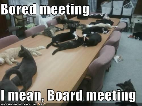 Image result for animals in meeting meme