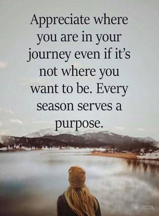 Inspirational Positive Quotes :Appreciate where you are in your journey even if its not where you want to be. E…
