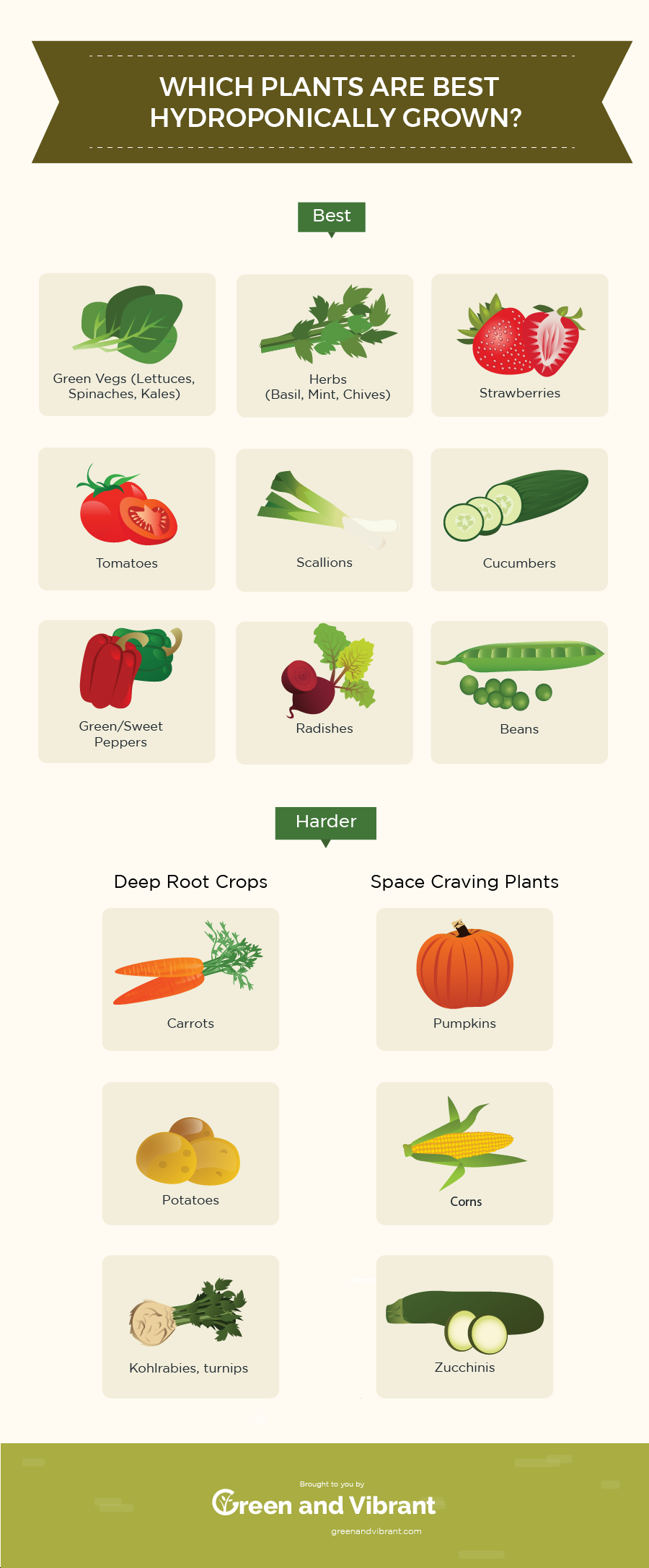 13 Best Easiest Plants (Vegetables, Herbs, and Fruits) That Can Be Hydroponically Grown is part of Hydroponic plants, Hydroponic farming, Hydroponic growing, Hydroponics, Easy plants, Hydroponics diy - Choosing what to grow in Hydroponics is a very important and enjoyable part when starting with Hydroponics  Here you'll find a list of some edible easytogrow plants (infographic included) that work very well with the Hydroponic cultivation