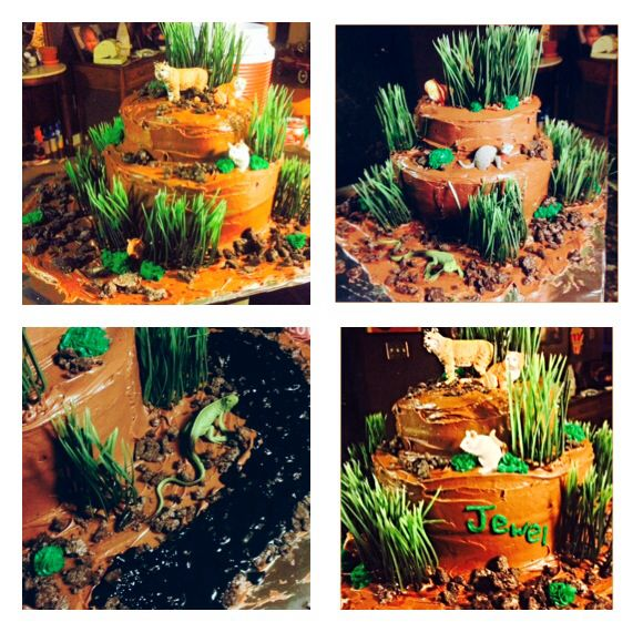 Warrior Cats Theme Cake Party Pinterest Warrior Cats And Cat