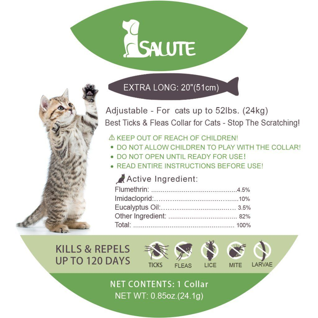 Salute Flea And Tick Collar For Cat And Dog 4 Month Protection Kitten And Puppies Adjustable One Size Fits All Water Resistant With Images Cat Fleas Flea And Tick Fleas