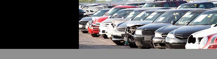 Iaa Buyers Insurance Auto Auction Car Auctions Car Insurance