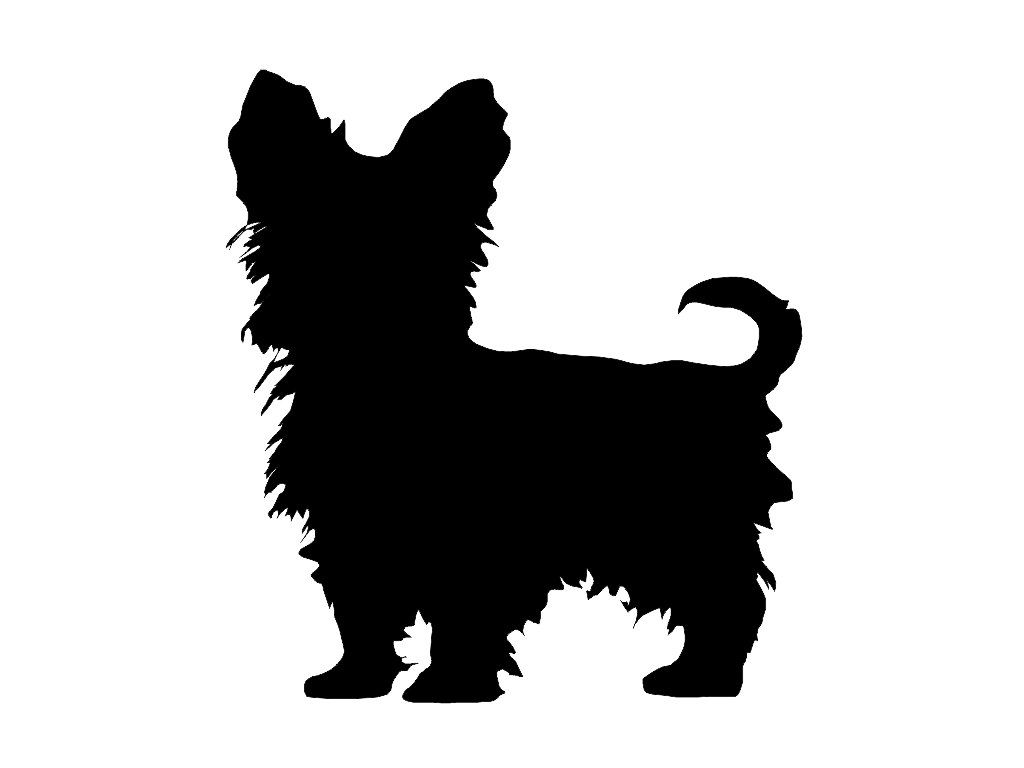 Coloring pictures yorkies -  Yorkshire Terrier Dog Decal This Is A Custom Made Decal In Your Color Choice We Use Only High Quality 5 Year Outdoor Grade Vinyl