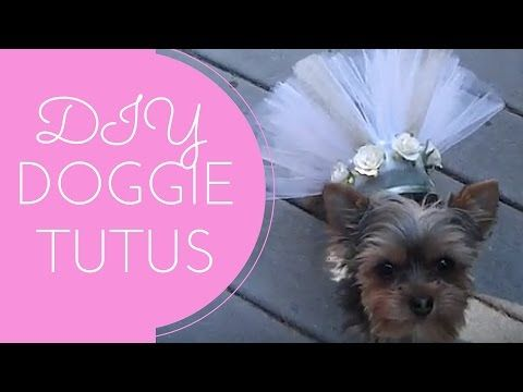 8341bb9da ✂ How To Make Easy Free Dog Clothes Cutting Pattern for Homemade ...
