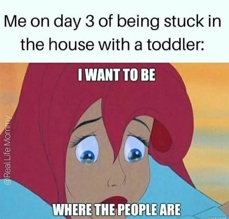 When Gracey Is Sick For A Long Time This Is My Feelings In A Nutshell Funny Mom Memes Motherhood Funny Mom Humor