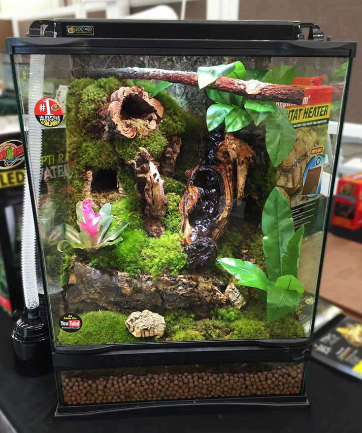 Diy This 18x18x24 Zoo Med Terrarium Cork Flats Can Be Used